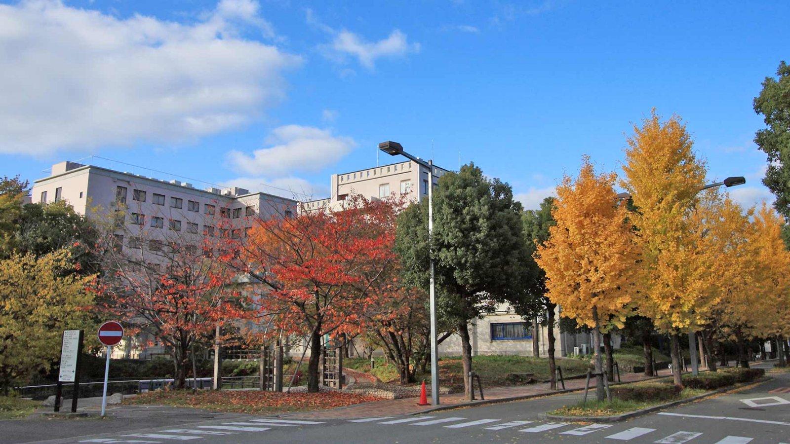 OSIPP-Osaka-University-Autumn