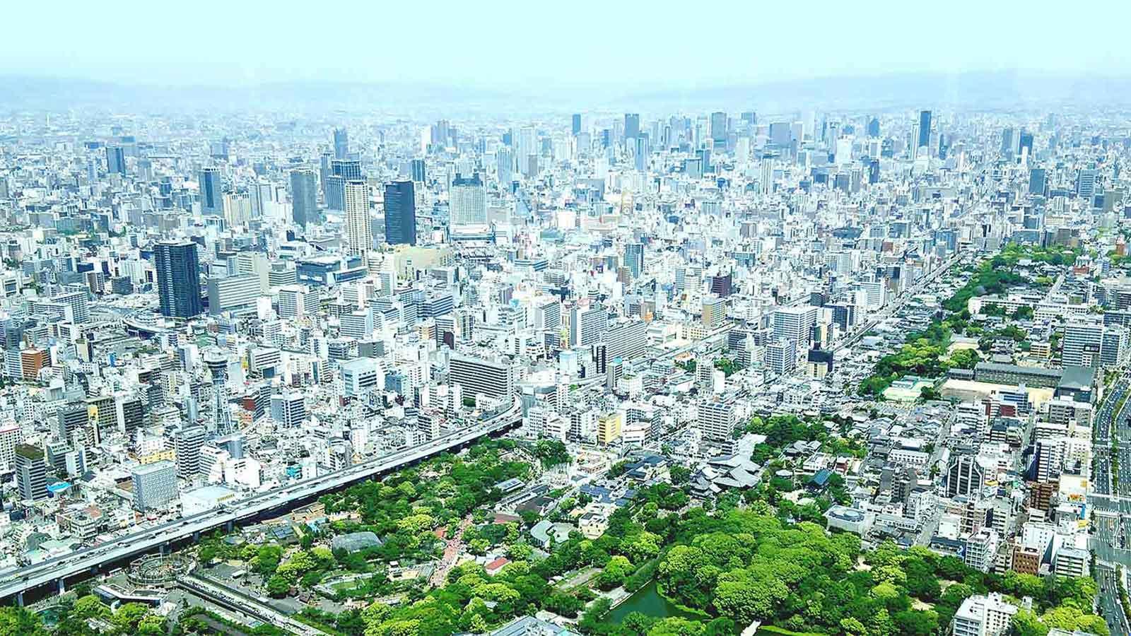 OSIPP-Osaka-city-crop