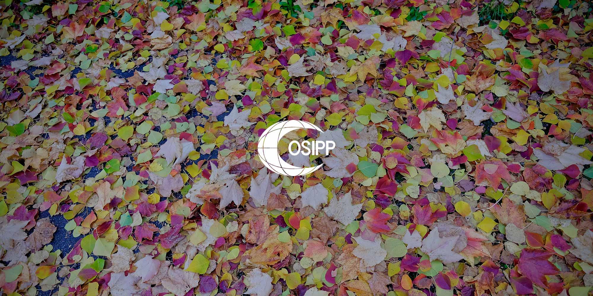 OSIPP leaves logo