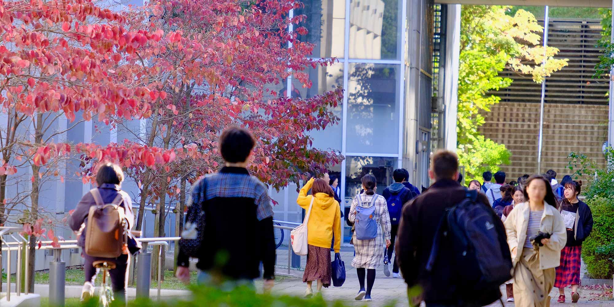 Toyonaka Autumn Campus Photo