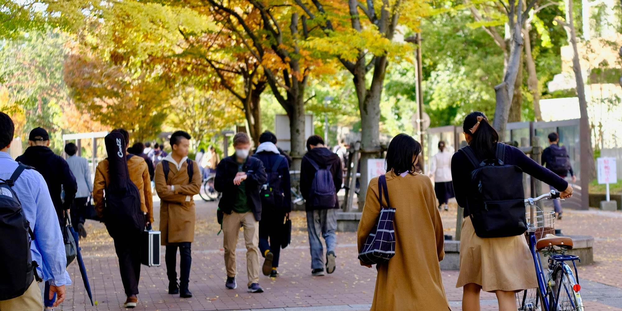 Toyonaka Campus General Education Street