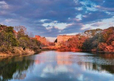 Nakayama Pond dusk at Toyonaka Campus
