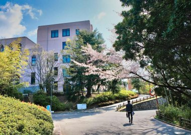 Osaka University Hall in the spring